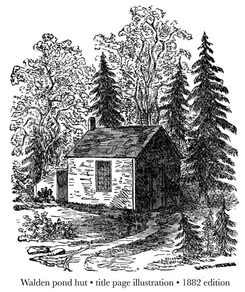 Walden pond hut