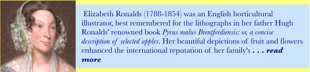 Elizabeth Ronalds (1788-1854) was an English horticultural illustrator, best remembered for the lithographs in her father Hugh Ronalds' renowned book Pyrus malus Brentfordiensis: or, a concise description of selected apples. Her beautiful depictions of fruit and flowers enhanced the international reputation of her family's . . . read more